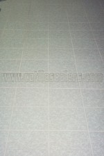 ceramic-porcelain-tile-floors-acid-washed-sealed11s