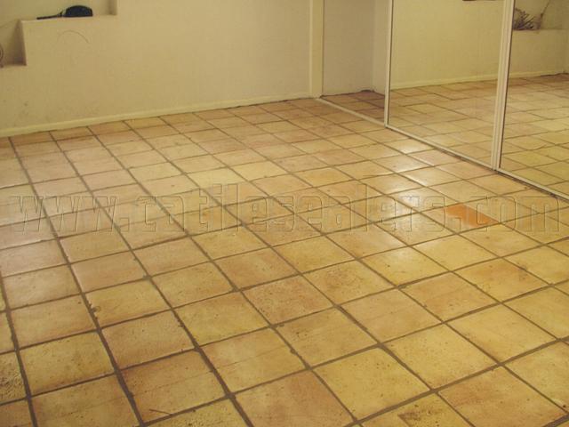 Saltillo Tile Stain / Stain RemovalCalifornia Tile Sealers ...